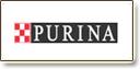 פורינה